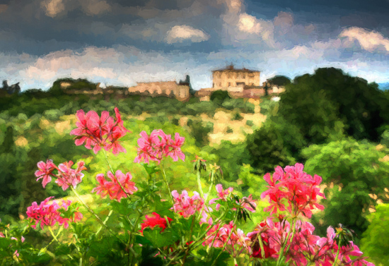 art prints - Tuscan Springtime by Steve Burkett
