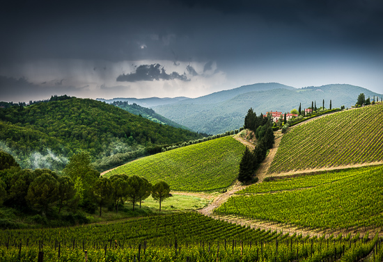 art prints - A Bit of Tuscan Heaven by Steve Burkett