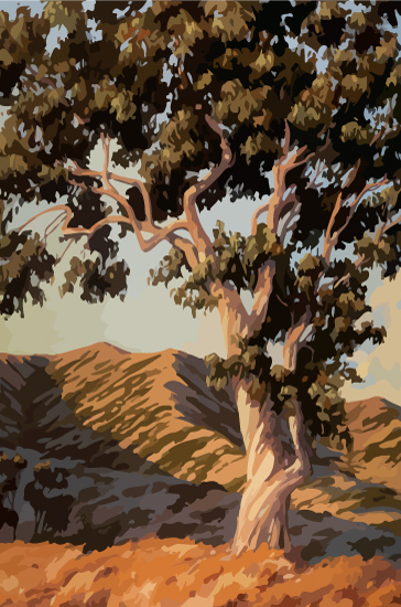 art prints - California Color by James Davis