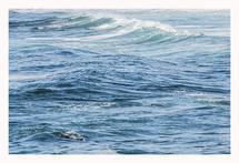 Pacific Blue 3 by Rebecca Rueth Designs