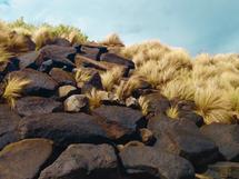 Australia by Nikita Almer