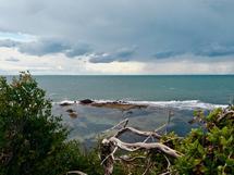 Cloudy Bay by Nikita Almer