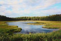 Alaskan Daydream by Debbie Shiffer