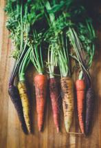 Carrots by Helen Makadia Photography