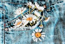 Pocket Full of Daisies by Marcie Adams