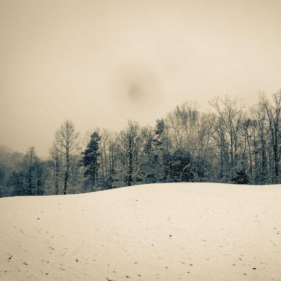 art prints - Winter Wonderland by Sydnie Horton