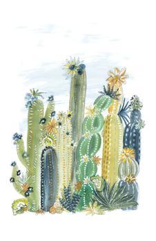 Cactus Incandesce II