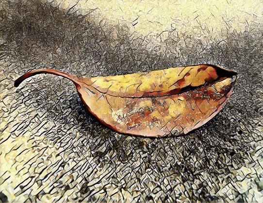 art prints - Abstract Leaf Art by Jenny Rajan Valiaveetil