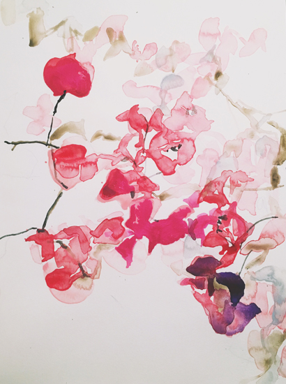 art prints - Bougainvillea Kisses
