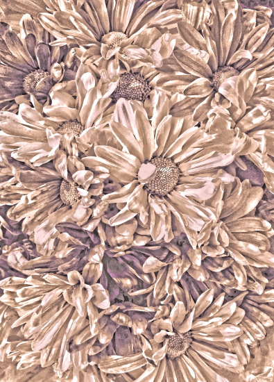 art prints - Chocolate Cranberry Petals by Mariecor Agravante
