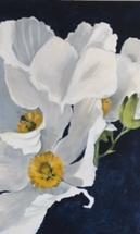 Poppy by Rebecca Kiser