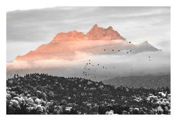 Landscape collage #1