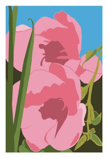 art prints - Wild Flower by Stephanie Miller