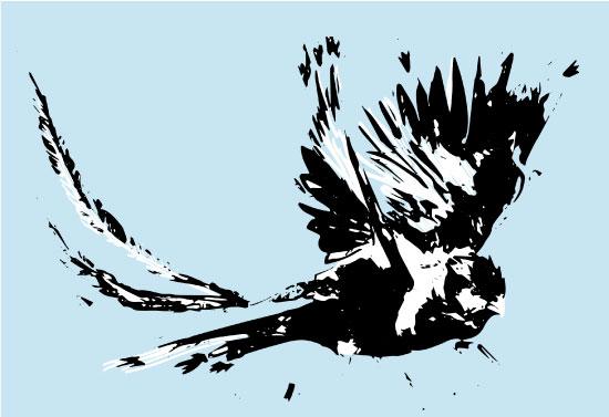 art prints - Quetzal by GoldenDreams Studio