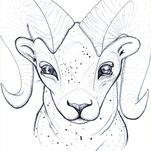 Zodiac Aries by GoldenDreams Studio