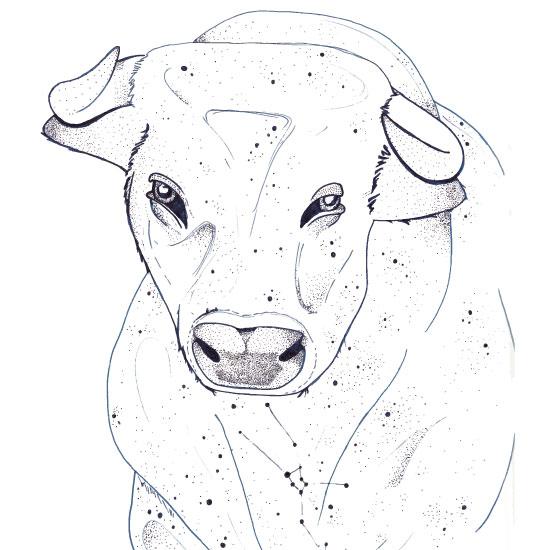 art prints - Zodiac Taurus by GoldenDreams Studio