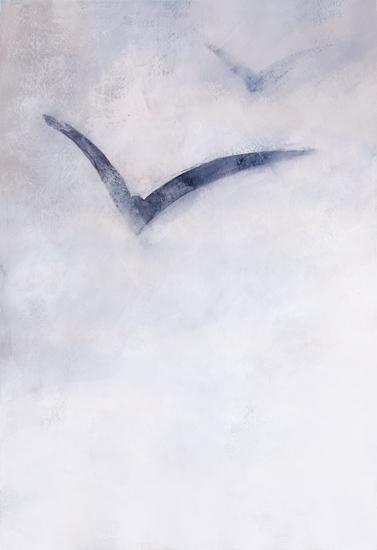 art prints - Albatross by Agata Wojakowska