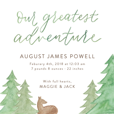 birth announcements - Our Greatest Adventure by Amy Zhang
