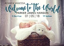 Welcome to the World by Michayla Pearson