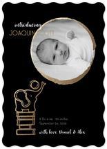 Baby Elaphant by Henri Martinez