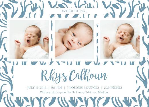 birth announcements - Sea Grass by Cindy Reynolds