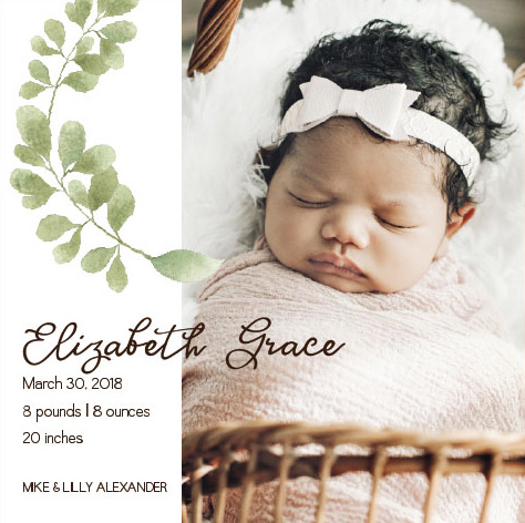 birth announcements - Botanical Bliss by Karen Holcombe