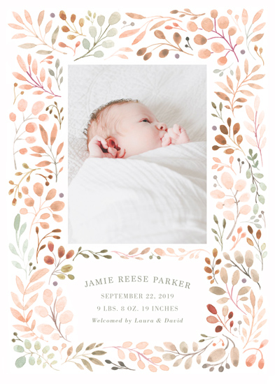 birth announcements - Sweet Vine by Morgan Ramberg