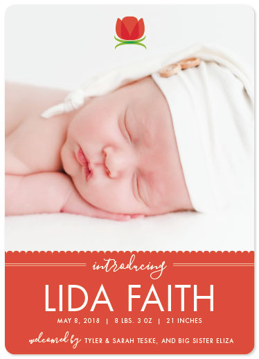birth announcements - Little Tulip by Sarah Teske