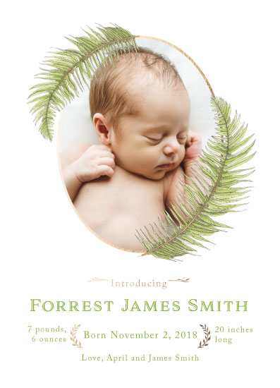 birth announcements - Fern by Madrona Press