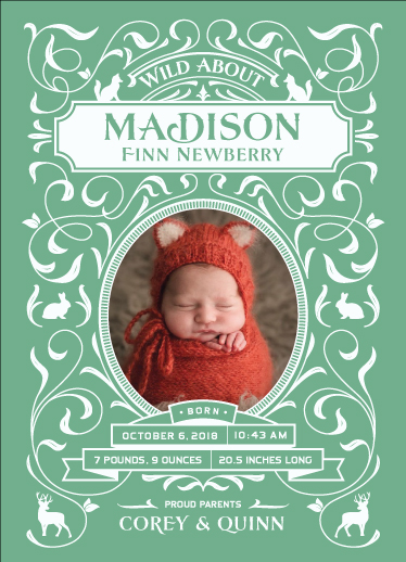 birth announcements - Wild About Baby by Janice Rudan