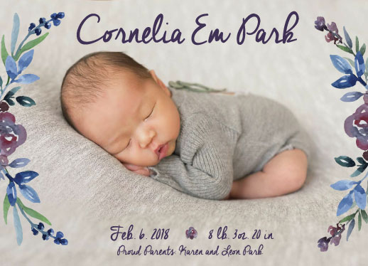 birth announcements - Little Sweet Plum by Olivia M Chung