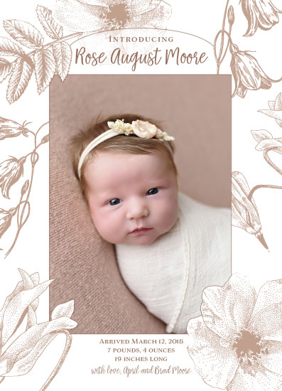 birth announcements - Wildflower frame by Madrona Press