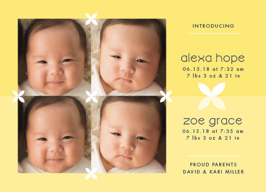 birth announcements - Knit Together Twins by Sarah Teske