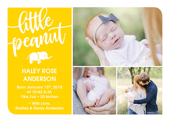 birth announcements - Little Peanut by Pauline Lee