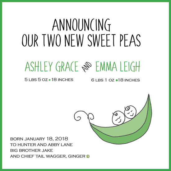 birth announcements - Sweet peas-twins or triplets by Amy Stouffer