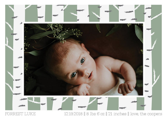 birth announcements - Baby Birch by Jacquelyn Kellar
