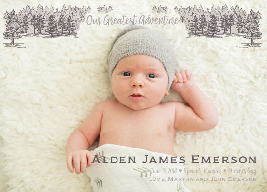 birth announcements - Adventure by Madrona Press