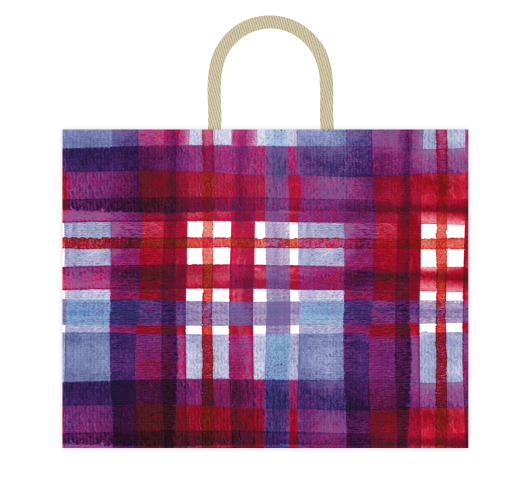 - Colorful Plaid by Kelsey Beaudoin