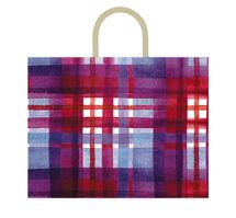 Colorful Plaid by Kelsey Beaudoin