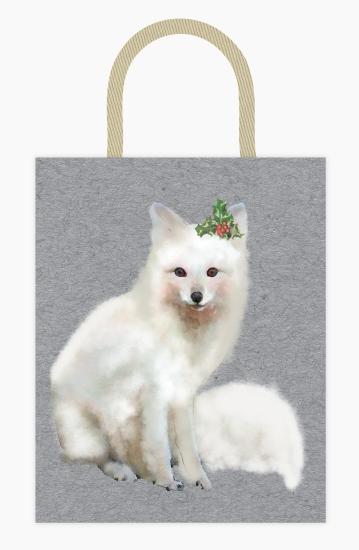 - Arctic fox by Cassandra Imagines