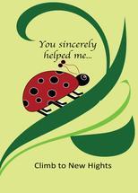 Climb to New Hights by Kristen Niedzielski