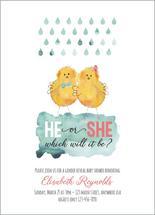 He or She Chicks by Karen Holcombe