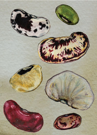 greeting card - Bean Thinking About You by Janie Allen