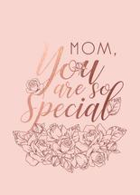 Special Mom by Karen Braga