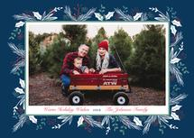 Holly & Pine Wishes by Michele Norris