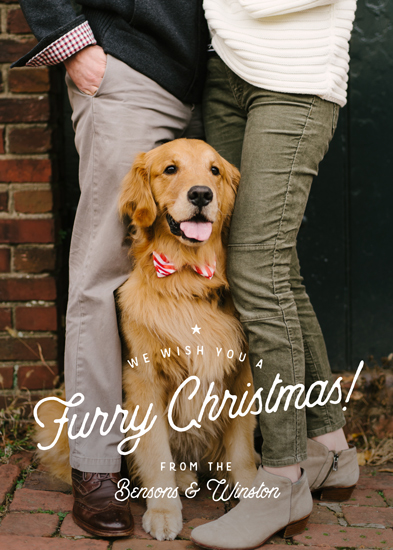 holiday photo cards - Furry Christmas by Eric Clegg