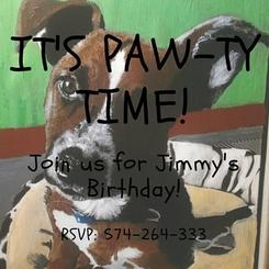 It's Paw-ty Time!