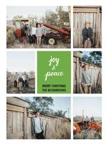 Joy & Peace by Cirilyn