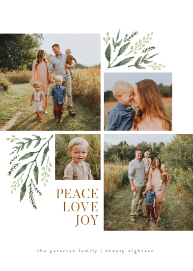 holiday photo cards - Holiday Boughs by Robert and Stella