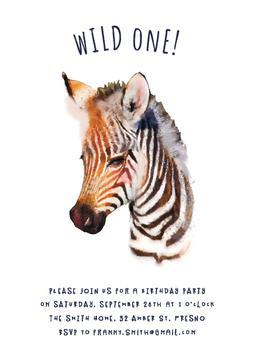 Wild One zebra